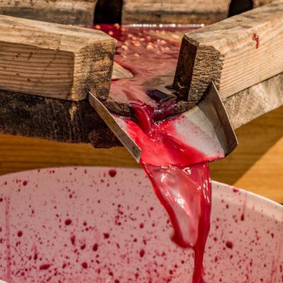 Tour to Bessarabia, Ukraine. Traditional wine making. August 2019.